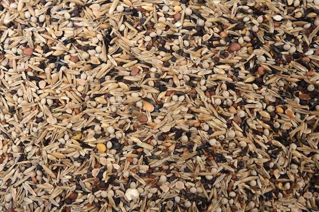 Tekstura mieszanki ziaren dla bardzo małych ptaków typu fringilla coelebs