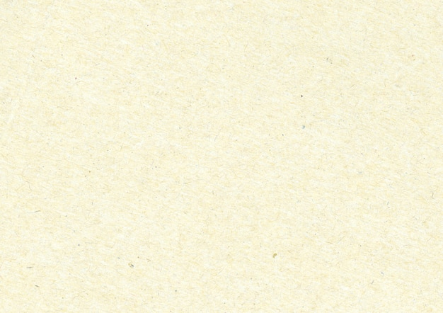 Tekstura papirus