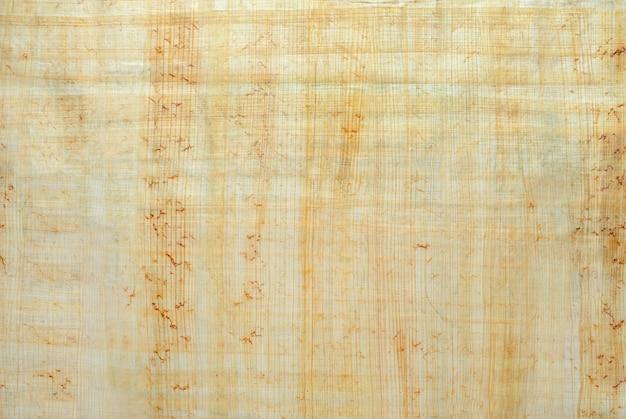 Tekstura powierzchni naturalnego egipskiego papirusu stworzona przez autentyczną technologię