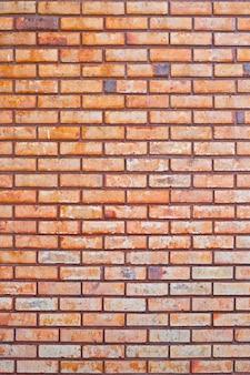 Tekstura ściana z cegieł