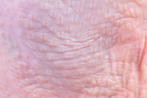 Tekstura skóry kurczaka