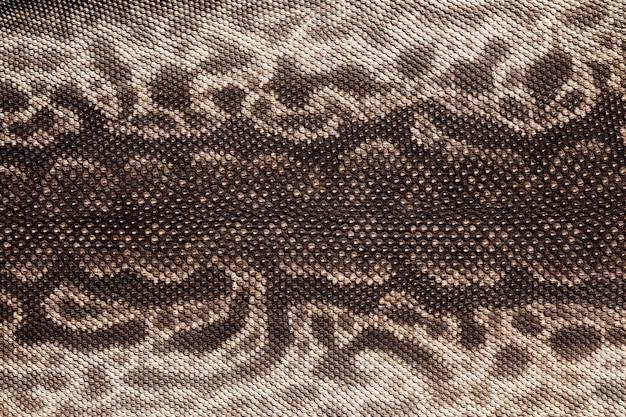 Tekstura skóry węża tułowia słonia