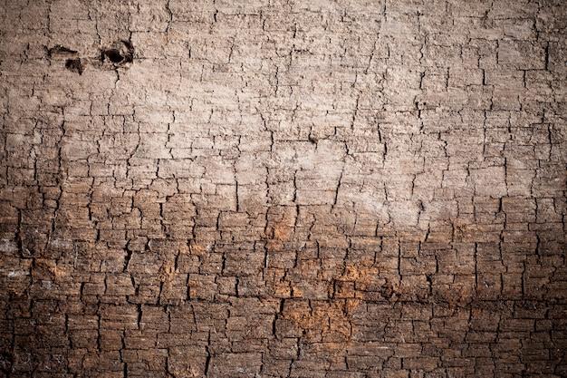 Tekstura starego drewna.