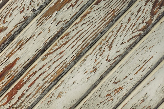 Tekstura starego drzewa