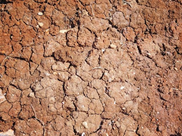Tekstura suchego lądu