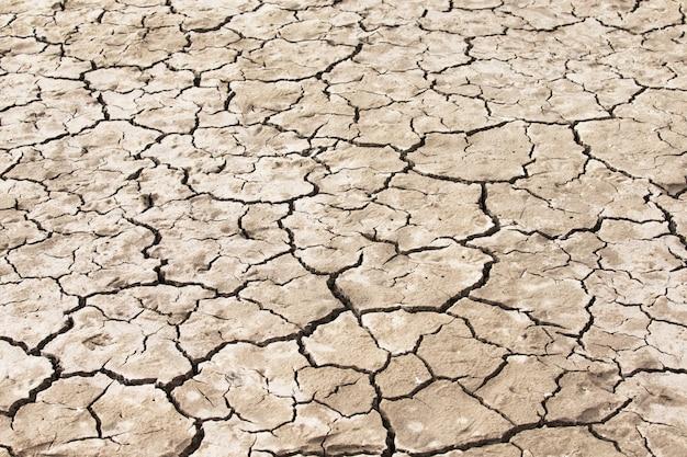 Tekstura Suchej Gleby Premium Zdjęcia