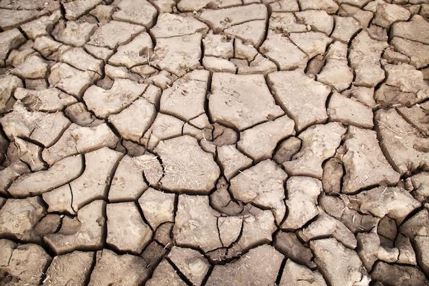 Tekstura suchej popękanej ziemi