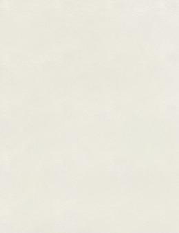 Tekstura teksturowanej ziarnisty papier akwarelowy. tekstura teksturowanej ziarnisty papier akwarelowy. papier teksturowy do rysowania.wysokiej jakości ilustracja