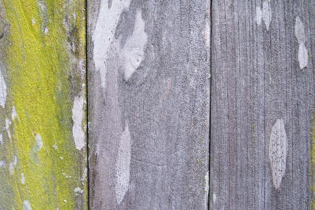 Tekstura tła starego drewna z zielonym mchem