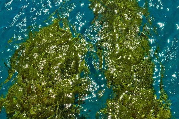 Tekstura tła wybrzeża morza czerwonego latem