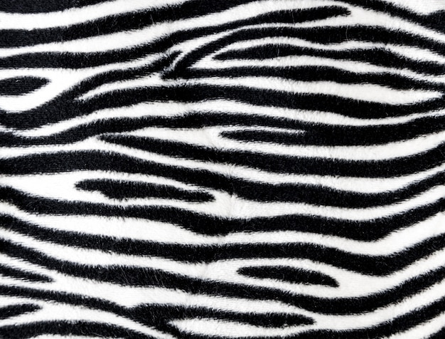 Tekstura tło futro zebry