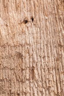 Tekstura tło starej drewnianej desce.