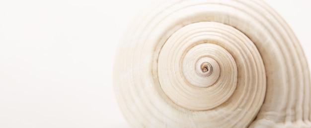 Tekstury powłoki wirować abstrakcyjne tło