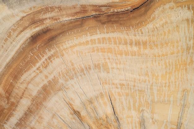 Tekstury ściany drewna