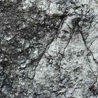 Tekstury ściany kamienia