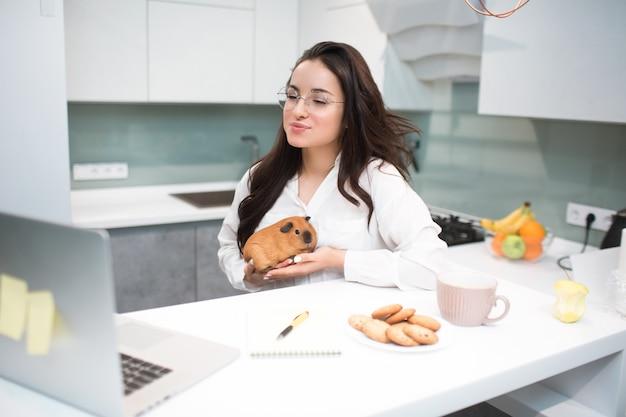 Telemedycyna, konsultacja weterynaryjna online. młoda kobieta trzyma świnkę morską. lekarz doradza pacjentowi