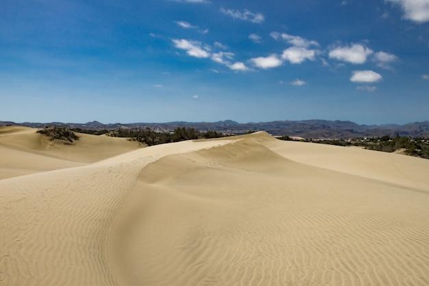 Teren pustynny z wydmami i pasmem górskim