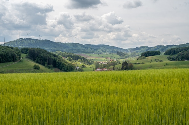 Teren rekreacyjny odenwald w sercu europy