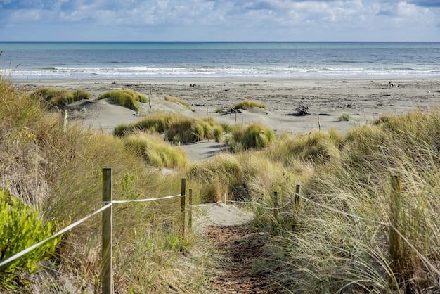Teren spacerowy przed plażą waikawa w nowej zelandii