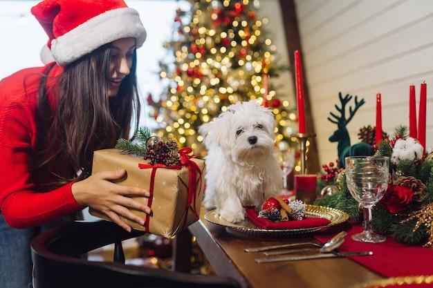Terier na ozdobnym świątecznym stole, z boku stoi dziewczynka trzymająca prezent