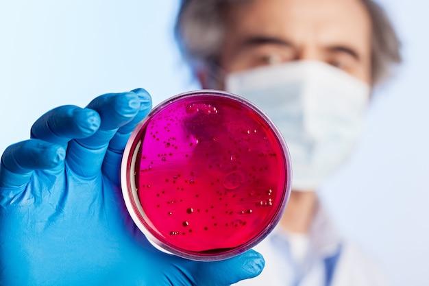 Test laboratoryjny mikrobiologii w ręku naukowca na tle