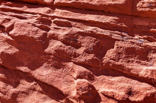 Textured koralowy piaskowcowy tło