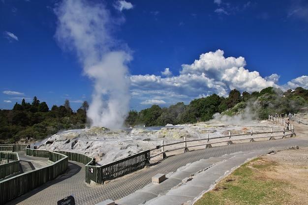 Thermal park w rotorua w nowej zelandii