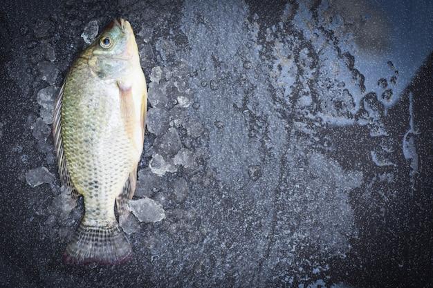Tilapia ryb słodkowodnych do gotowania żywności, świeża surowa tilapia z gospodarstwa, widok z góry świeżych ryb