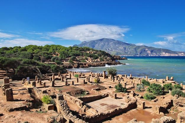 Tipaza rzymskie ruiny kamienia i piasku w algierii, afryka