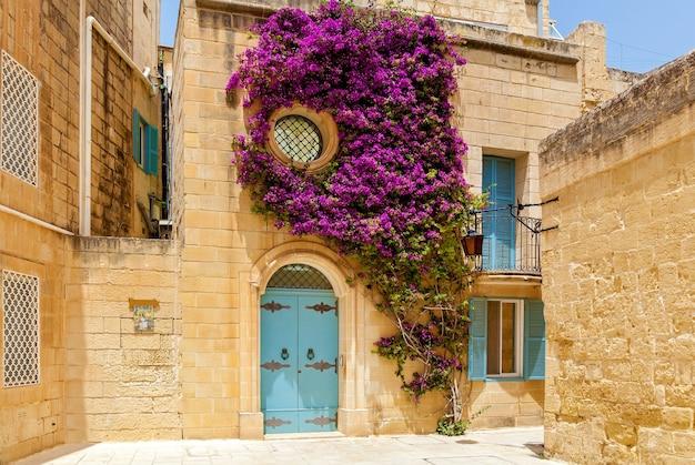 Tkactwo roślin z fioletowymi kwiatami na fasadzie budynku z niebieskimi drewnianymi drzwiami i oknami mdina, malta.sights of malta