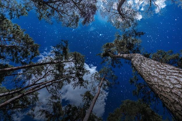 Tła nocne niebo z gwiazdami i chmurami.