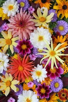 Tle kwiatów, karty z pozdrowieniami.
