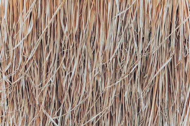 Tło dachu strzechy, siana lub suchej trawy. dach kryty strzechą, siano lub sucha trawa w tle. siano z trawy, tekstura dachu. sucha słoma, tekstura tło dachu.