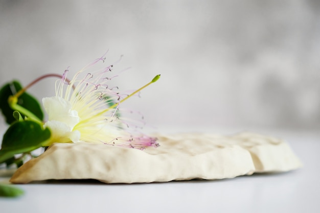 Tło dla produktów kosmetycznych z naturalnego szarego kamienia podium i kwiatu na szarym tle ...