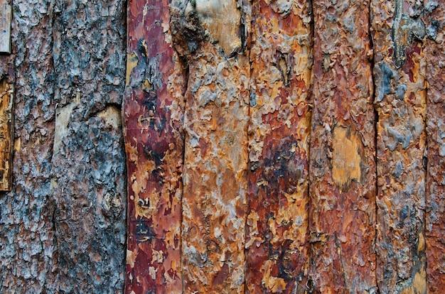 Tło drewniany płot wykonany z obranych pni sosny, naturalne tekstury drewna