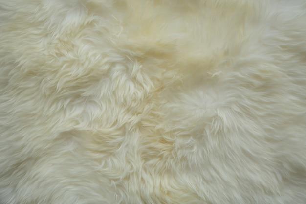 Tło dywan w kolorze kremowym futra