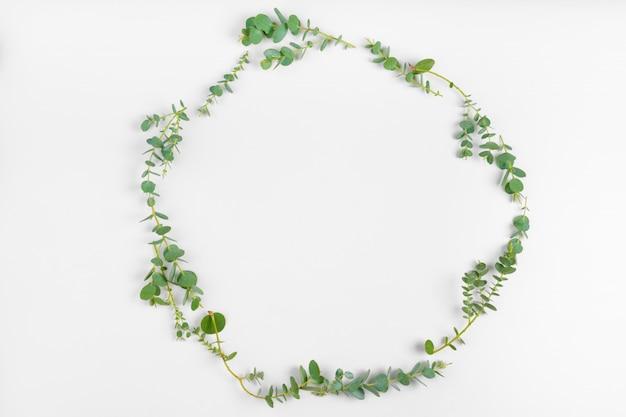 Tło gałąź kwieciści i liście odizolowywający na białym tle. leżeć płasko, widok z góry