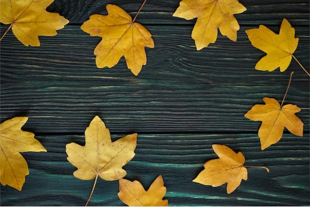 Tło: jesienne liście klonu żółtego na starej teksturowanej desce. widok z góry