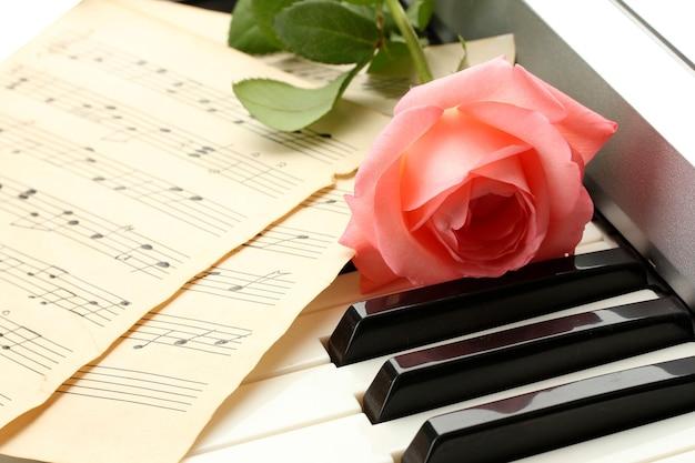 Tło klawiatury fortepianu z różą