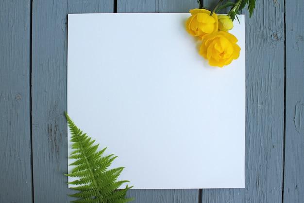 Tło kwiaty na białym papierze