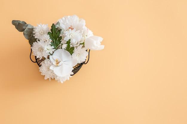 Tło ma jednolity kolor z żywym białym kwiatem.