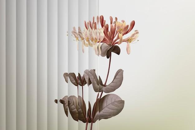 Tło natury z kwiatem za wzorzystym szkłem