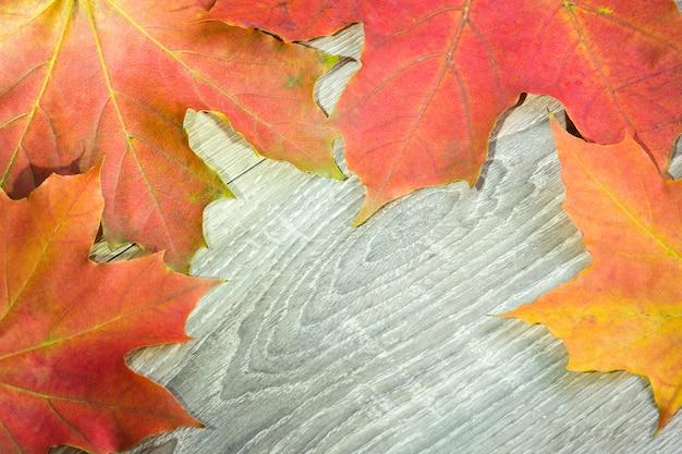Tło od jesień czerwonych liści na drewnie