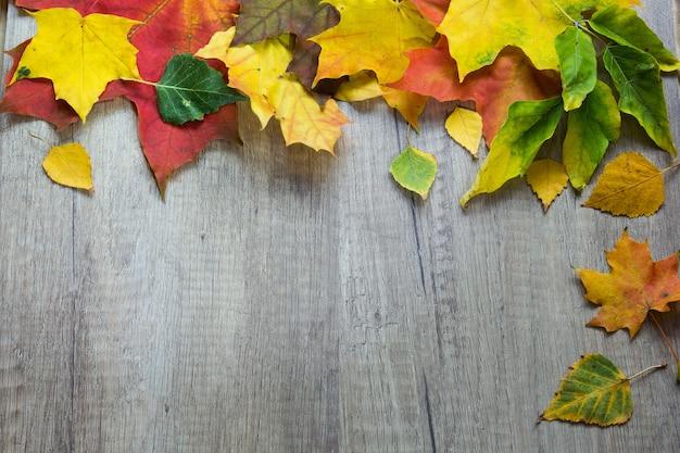 Tło od jesień liści na drewnie