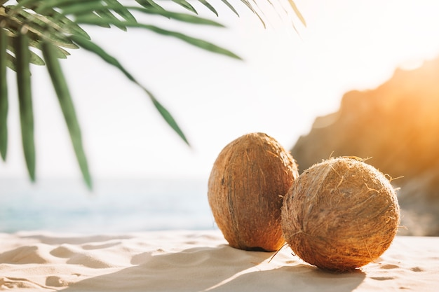 Tło plaża z orzechami kokosowymi