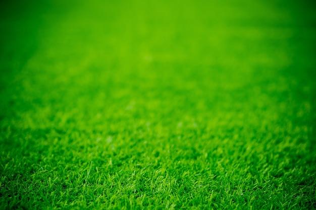Tło pola trawy, zielona trawa,
