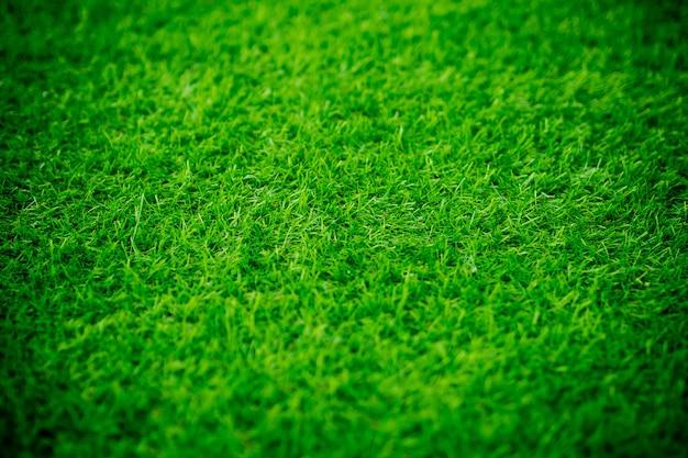 Tło pola trawy