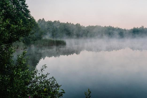 Tło połowów. łowienie karpi. mglisty poranek.