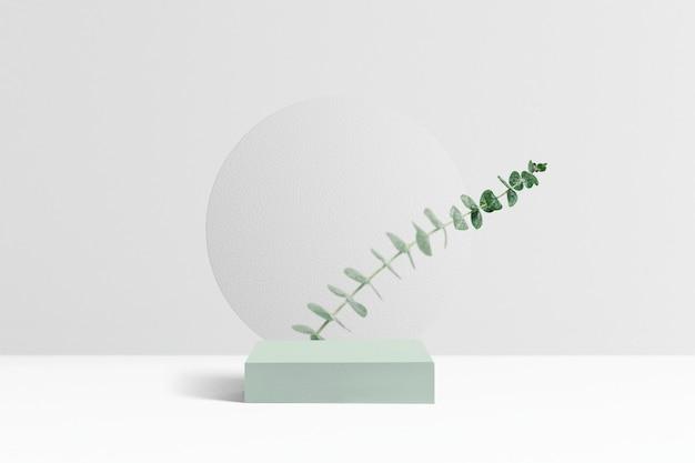 Tło produktu botanicznego, liście eukaliptusa
