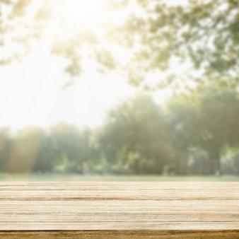 Tło produktu natury, zielone drzewa i światło słoneczne